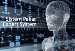 aplikasi-aplikasi sistem pakar