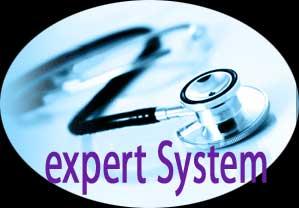 gambar expert system