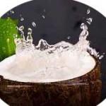 Manfaat Air Kelapa Bagi Kesehatan dan Kecantikan Kulit