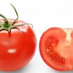 gambar tomat segeer