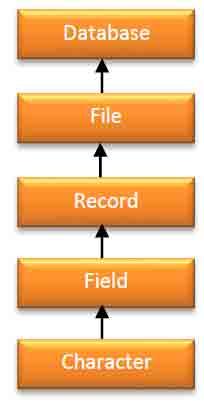 tingkatan dalam database