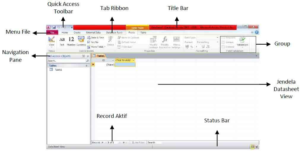lembar kerja microsoft access 2010